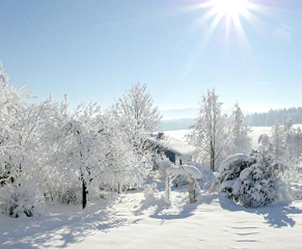 snow_intro431